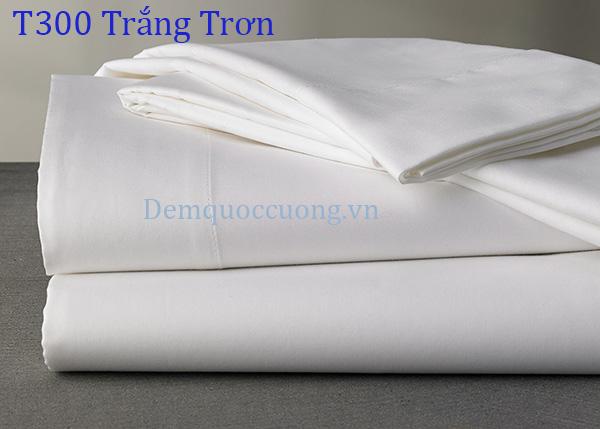 T300 Trắng Trơn